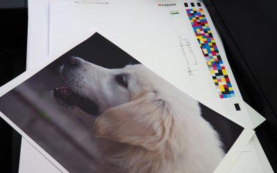printen-fullcolor-A4-A3