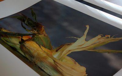 printen-fullcolor-grootformaat